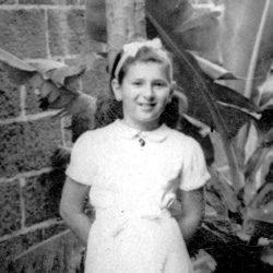 November1938-Berichte-Schrott-Kitty-Kitty-Schrott048-cropped-250x250